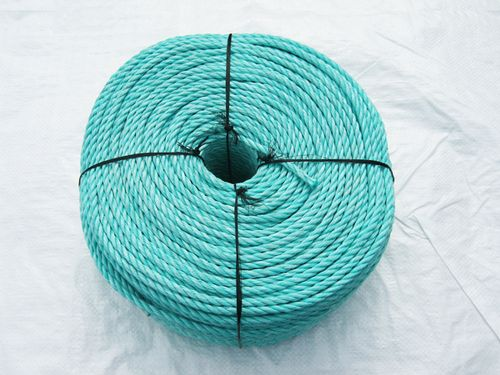 10MM x 220 Metre Coil, Green, Polypropylene (PP) Danline Rope - Marine / Boat / Yacht Poly Polyprop